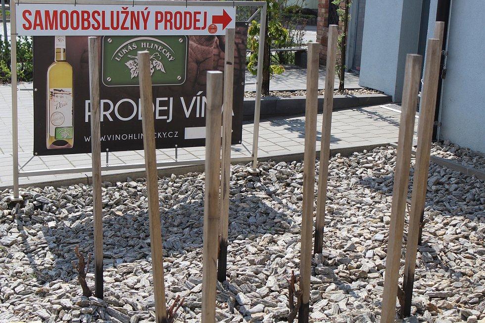 Vinařství v centru Čejkovic.