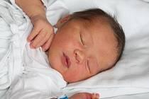 Dominik Fanta, 54 cm, 3,98 kg, Hodonín, 29. 12.2013 , porodnice Břeclav