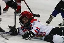 Hodonínský mládežnický klub se zapojil do celorepublikové náborové akce Týden hokeje. Na zimním stadionu Václava Nedomanského se v neděli dopoledne představilo padesát dětí.