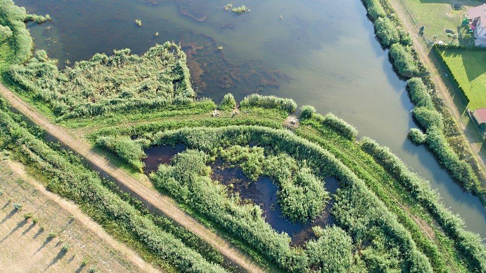 Do krajiny vrací vodu i život, budování biokoridorů je v kurzu. Na snímku biokoridor v Starovicích na Břeclavsku.