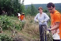 Na záchranu motýlů se vydala skupina pracovníků společnosti Ing.