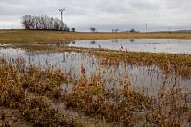 Laguny v polích na Hodonínsku.