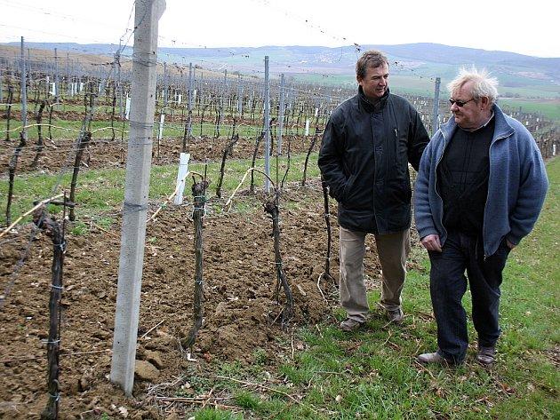 Pěstitel Jean-Luc Pascal (vpravo) si prohlédl vinice v Archlebově za doprovodu jednatele firmy Spielberg Jaroslava Javornického.