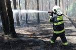Hasiči musí jednotlivá ohniska neustále prolévat vodou, aby se znovu nevznítila.