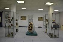 Ukázat krásu dřeva a vyzkoušet si práci na soustruhu se rozhodli umožnit lidem správci Masarykova muzea v Hodoníně.
