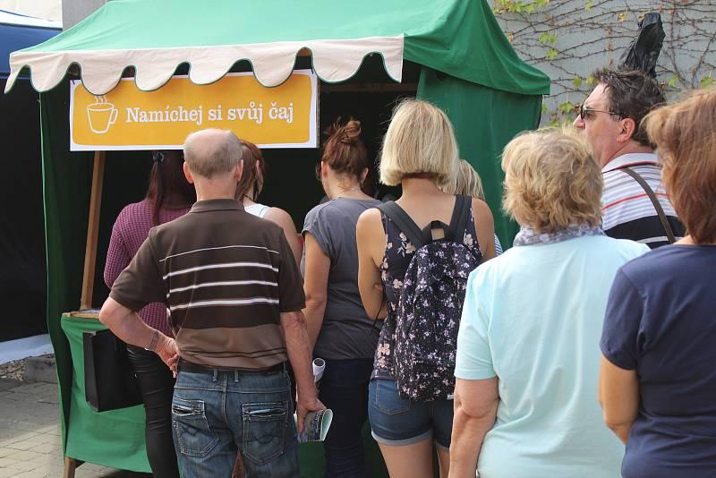 Bylinkové slavnosti v Čejkovicích