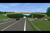 Studie lávky pro pěší i cyklisty přes silnici číslo pětapadesát. I kvůli ní chtějí Hodonínští směnit pozemky s Lesy ČR.