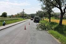 Není jasné, zda na silnici větev ležela, nebo na cyklistku spadla.