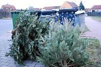 Vyhozené stromky u popelnic. Ilustrační foto.
