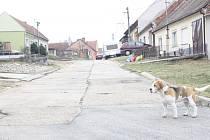 Čajkova ulice ve Vacenovicích před opravami.