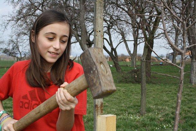 Vareálu Bajarova sadu uZákladní školy a mateřské školy vHroznové Lhotě, vysadili žáci na tři desítky stromků starých ovocných odrůd.