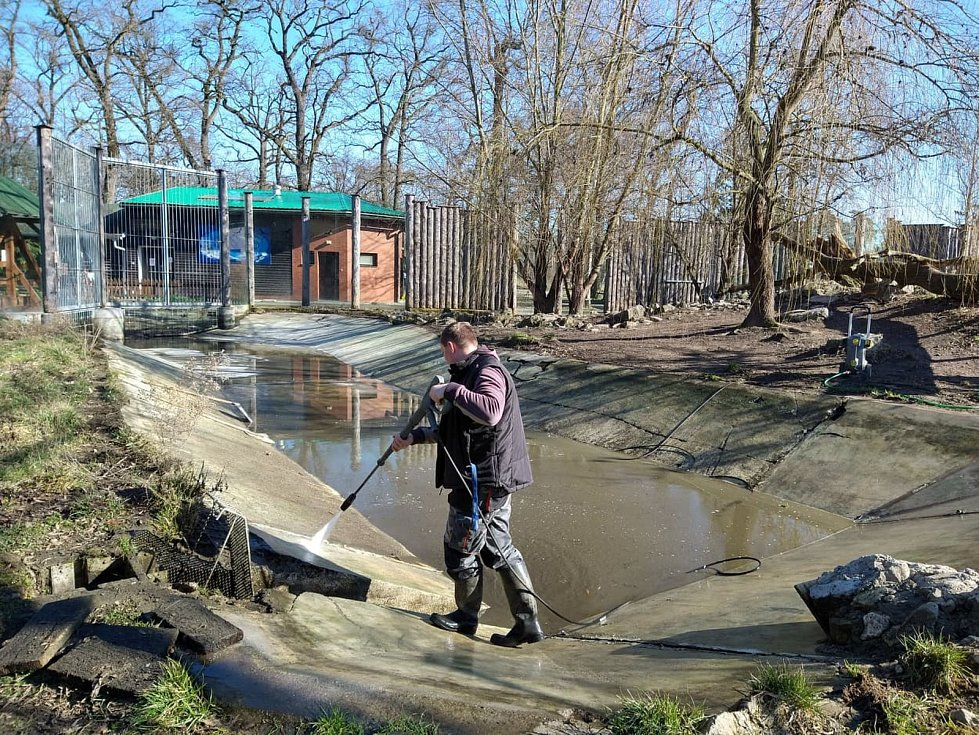 Čištění jezírka ve výbězích hodonínské zoo.