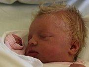 Karolína Gengelová, 49 cm, 3050 g, 26. 4. 2018 v 0.54, Šardice, nemocnice Kyjov