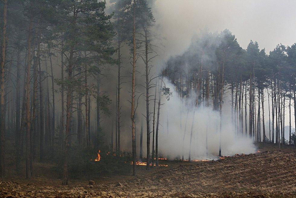 Asi největší lesní požár tohoto tisíciletí v České republice zasáhl téměř 165 hektarů porostů.