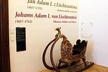 Výstava si klade za cíl přinést co nejucelenější informace o pozoruhodném knížeti Janovi Adamovi I. z Lichtenštejna.