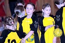 Hodonínské minižákyně, přezdívané Hodonínské vosy, skončily na domácím Novoročním turnaji čtvrté.