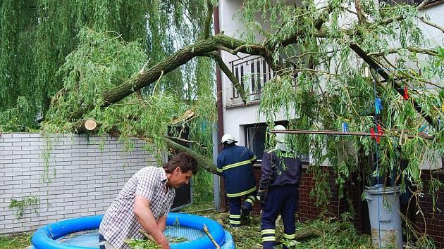 Větev se ze staré vrby ve vracovské Mlýnské ulici ulomila a spadla na sousední dům. Svezla se po něm a dopadla na zídku.