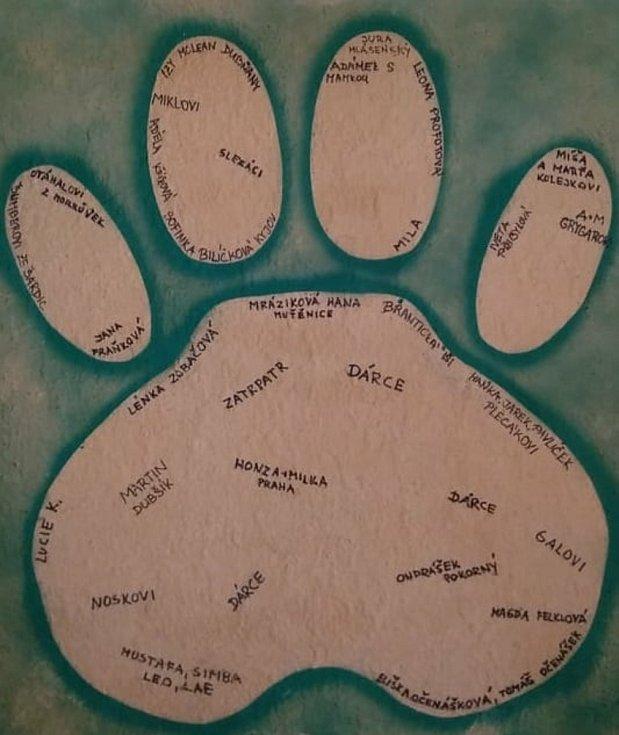 Hodonínská zahrada spustila sbírku pro lví smečku. Jména přispěvatelů zvěční v obraze lví tlapy.