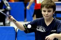 Hodonínský stolní tenista Štěpán Brhel na sedmém ročníku mezinárodního turnaje Malacky Open 2017 vybojoval ve dvouhře nejmladšího žactva stříbrnou medaili.