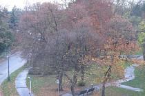 Park v Jánošíkově ulici v Hodoníně. Ilustrační foto.