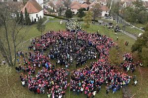 Z téměř dvou tisíc nafukovacích balonků vytvořili žáci a studenti kyjovských škol za pomoci veřejnosti živý vlčí mák, kterým uctili válečné vetrány.