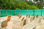 Ochrana želvích snůšek na ostrově Sipora.