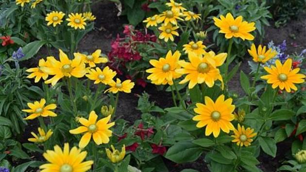 Nejkrásnější květinová výzdoba? Hodonínští vybírají z 26 fotografií.