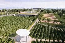 Vizualizace k vítěznému návrhu společnosti Vinařství Veselí nad Moravou na využití prostoru bývalé Salajky a Zahradnictví v sousedství veselského přístaviště.