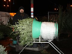 Už od listopadu se prodávají vánoční stromky jak v centrech měst, tak u maloobchodníků. Ceny jsou na loňské úrovni, v posledních letech se nejlépe prodávají jedličky.