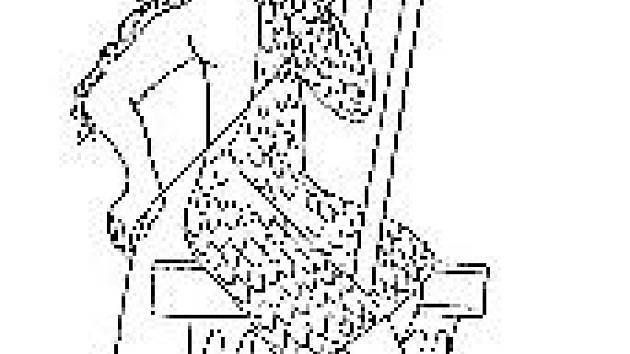 Vyobrazení přástevnice ve Veleslavínově bibli.