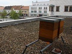 Kyjov nechal umístit na střechu restaurace u kulturního domu dva včelí úly.