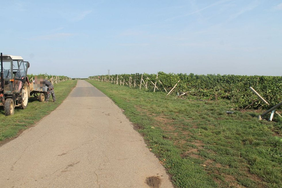 Auto u Prušánek nabouralo sloupky vinohradu.