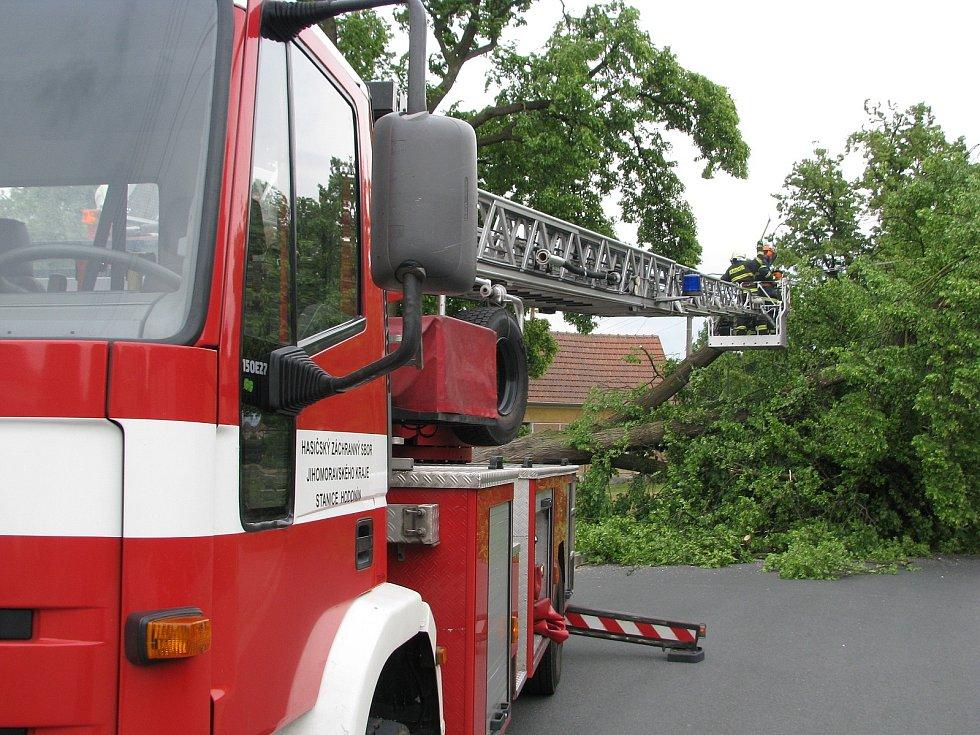 V centru Vacenovic spadla na vysoké napětí lípa.