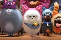 Letní kino v lázních Hodonín promítne Tajný život mazlíčků
