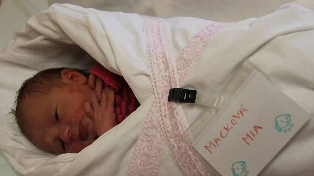 Prvním miminkem, které se letos narodilo v kyjovské porodnici, je Mia Macková.