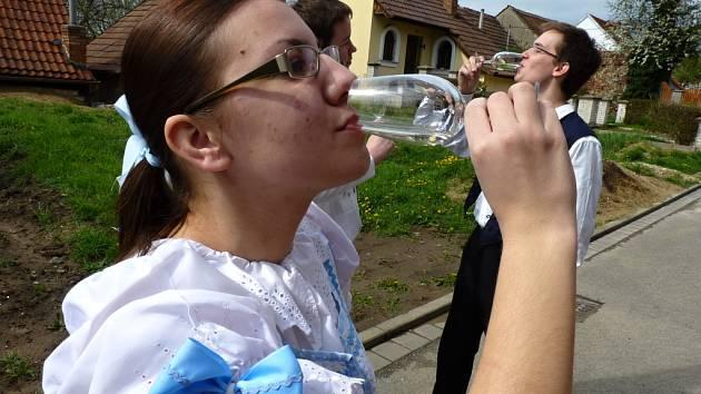 Otevřené sklepy potěší milovníky vína v Kyjově a Hovoranech. Ilustrační snímek.