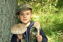 Malý houbař-velký úlovek