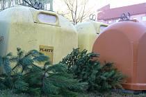 V Hodoníně mohou lidé vánoční stromky nosit k místům, kde jsou kontejnery na tříděný odpad a kompost.