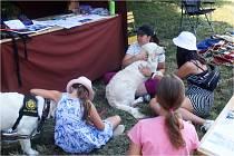 Úplně nový rodinný program Od Alíka po Maxipsa Fíka ukázal, jak se vyvíjelo naše soužití se psy.