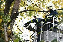 Hasiči nebezpečný strom pořezali