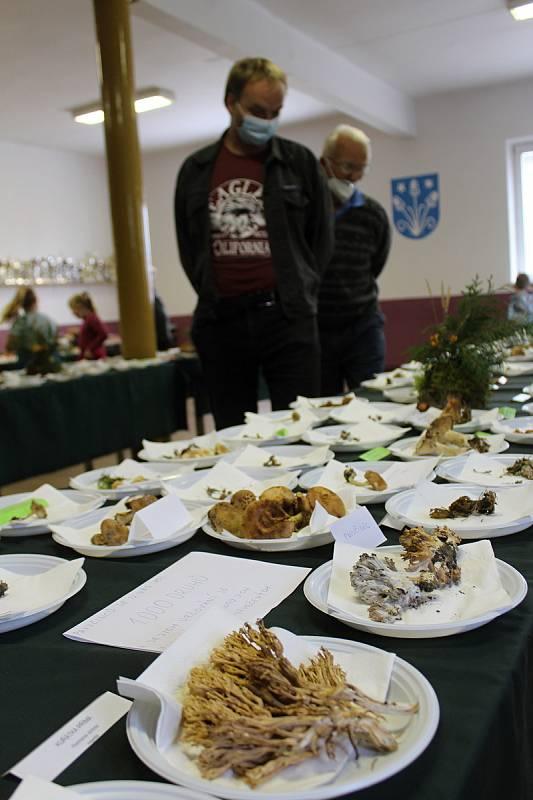 Poslední den jubilejní čtyřicáté výstavy hub v Ratíškovicích.