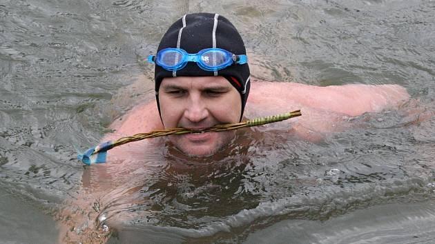 Čtyřiatřicet otužilých plavců změřilo své síly v chladné vodě řeky Moravy u hodonínského jezu. Měla šest stupňů Celsia.