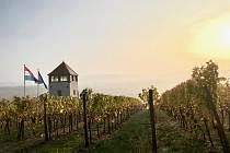 BV vinařství opět zabodovalo na soutěži Concours Mondial de Bruxelles.