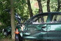 Opel skončil ve stromě u Veselí nad Moravou.