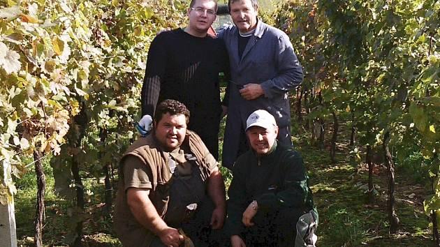 Hokejista Zdeněk Jurásek (vpravo dole) už se stihl po návrat z Německa dostat i do vinohradu. V Čejkovicích pomáhal při vinobraní společně s kustodem Drtičů Miroslavem Buškem a kamarádem Markem Svobodou známému vinaři Jindřichu Opluštilovi.