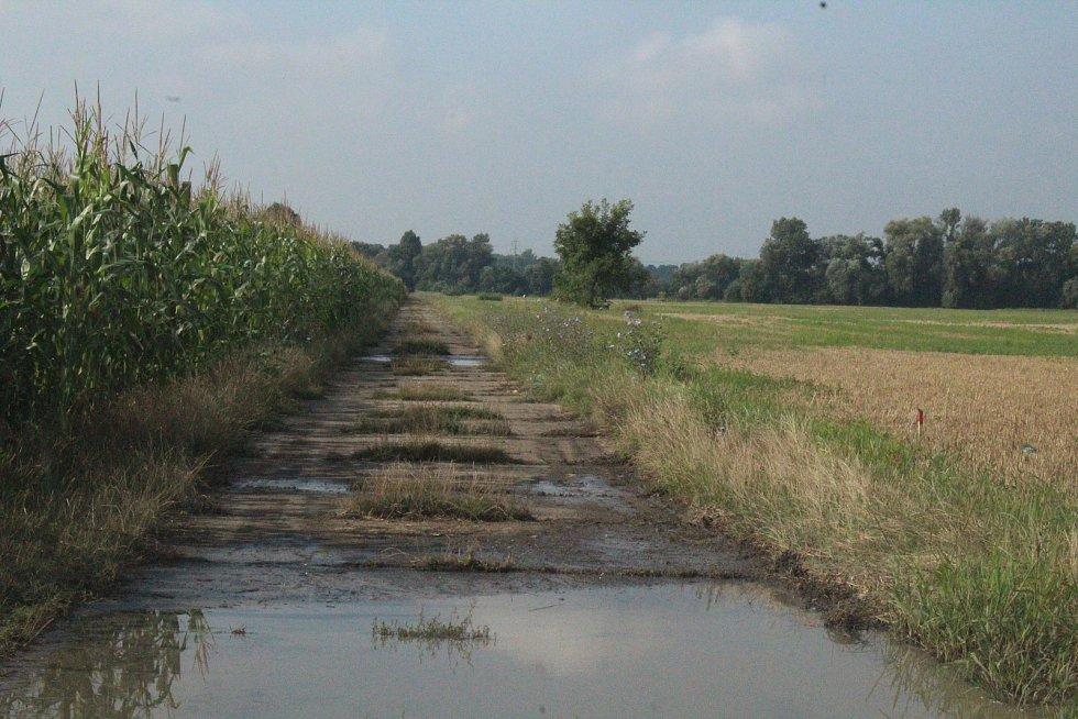 Současný stav polní cesty Očovskými loukami u Hodonína.