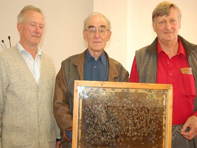 Letos uplyne sto let od založení včelařského spolku ve Veselí nad Moravou.