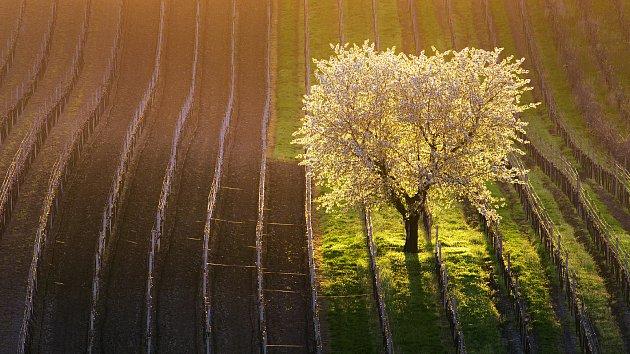 Moravské Slovácko objektivem fotografa Severy. Dostal ho mezi padesát nejkrásnějších míst světa