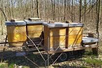Ukradený přívěsný vozík na včelí úly.