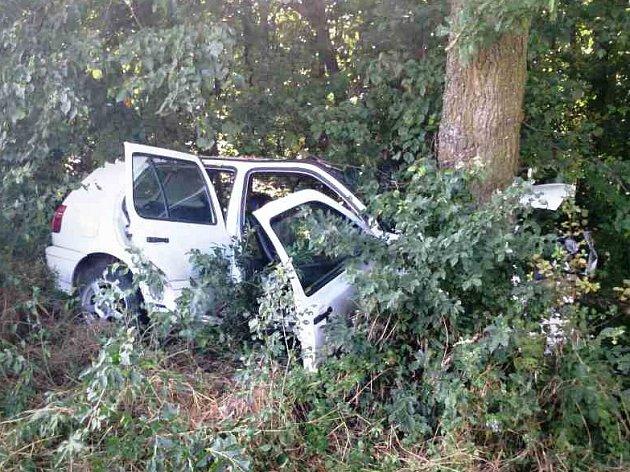 Řidič narazil s autem do stromu u Mutěnic.